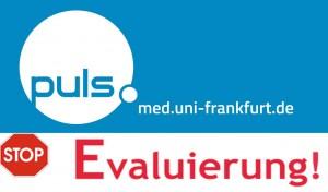 Pul_Evaluierung_Icon_klein